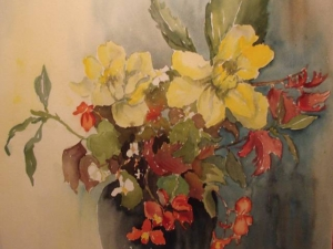 Red and Yellow Begonia